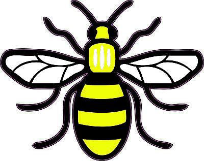 Pride Manchester Bee Poly Vinyl Sticker for CarVanLaptopTablet etc.