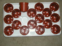 18-mini Plastic Flower Pots And 1-no Drain Hole Tray For Seed Starting-cactus