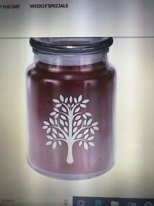 Image Is Loading Home Interiors Celebrating Apothecary Candles Nib 20