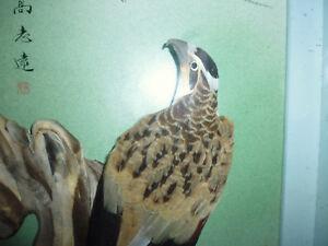Joli Cadre Décoration Oiseau Aigle Plume Déco Vintage Rétro