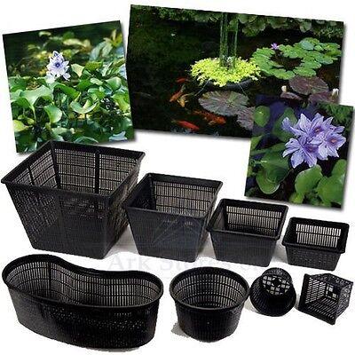 Superfish Square Pond Planting Basket ALL SIZES Aquatic Pond Planting Plants