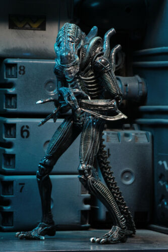 "NECA Alien Blue Xenomorph Warrior 7/"" Alien Series 2  Action Figure Collectible"