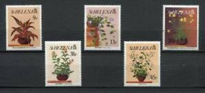 24922) S.Helena 1993 MNH New Flowers 5v