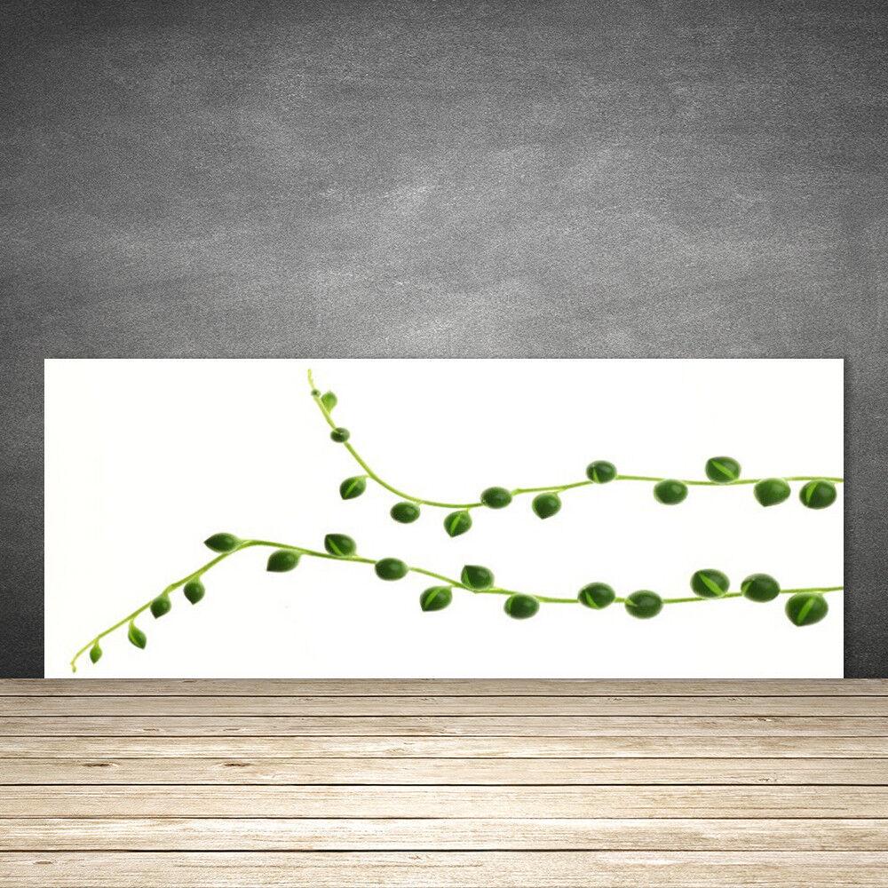 Crédence de cuisine en verre Panneau 125x50 Floral Plante Ornementale