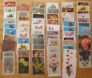 150 Cartoline Tematiche Antiche Fiori Colori E Bianco E Nero
