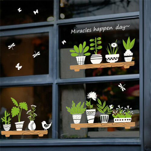 Plant Potted Shop Glass Door Cafe Decoration Wall Sticker sweet quotes mural  CC
