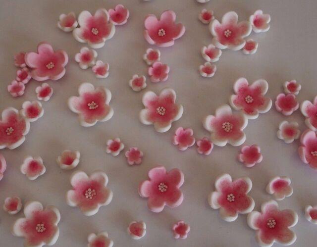 50 x edible cherry blossom flowers cupcake toppers sugar cake 50 x edible cherry blossom flowers cupcake toppers sugar cake wedding decoration mightylinksfo