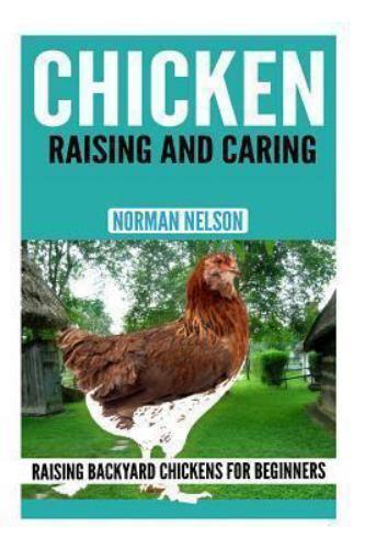 Chicken Raising And Caring Raising Backyard Chickens For Beginners