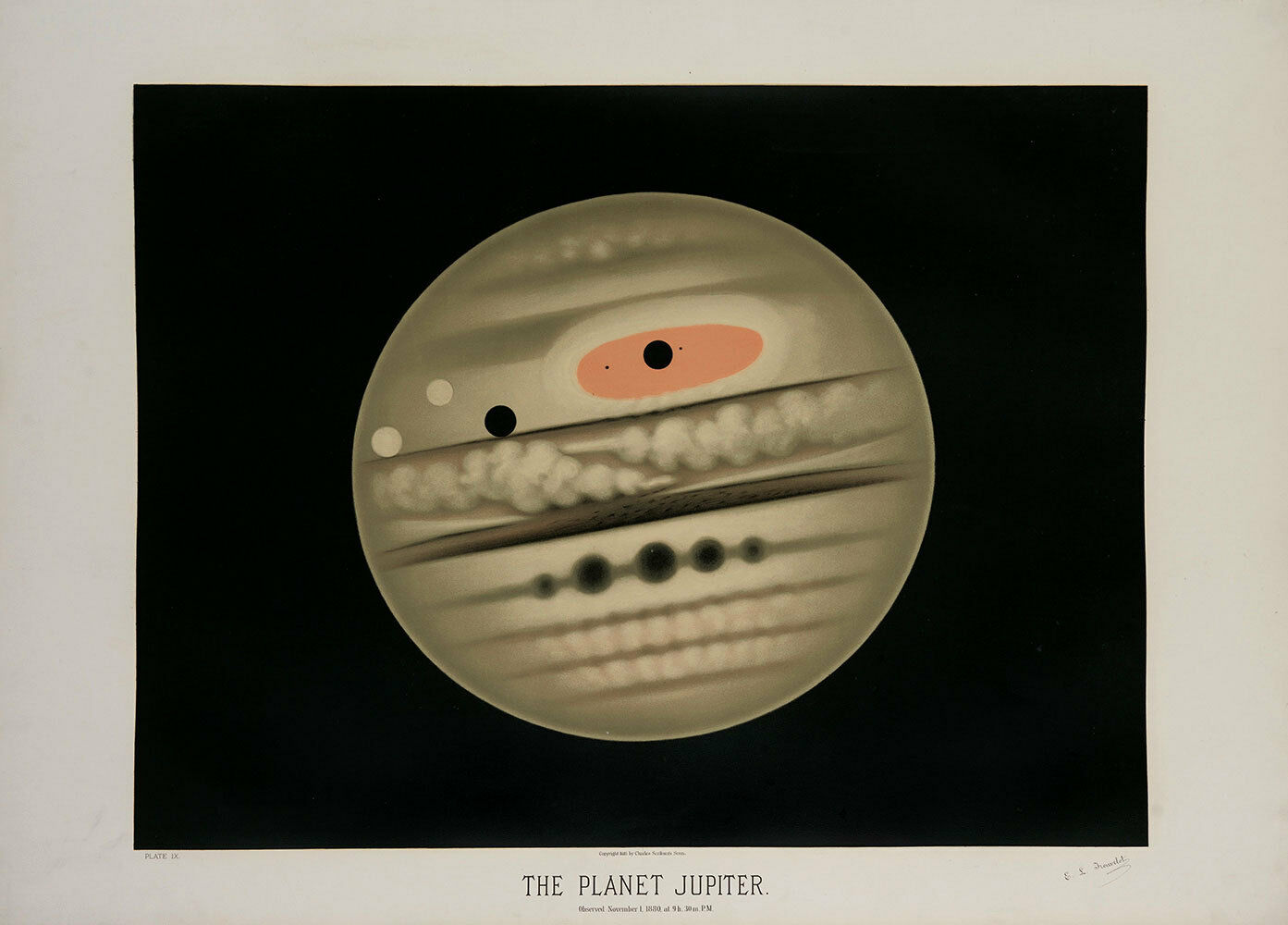 Etienne Trouvelot    The Planet Jupiter  (1882) — Giclee Fine Art Print