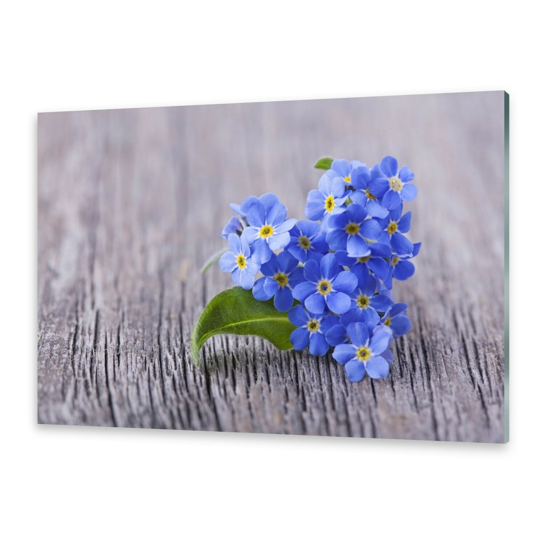 Acrylglasbilder Wandbild aus Plexiglas® Bild Vergissmeinnicht