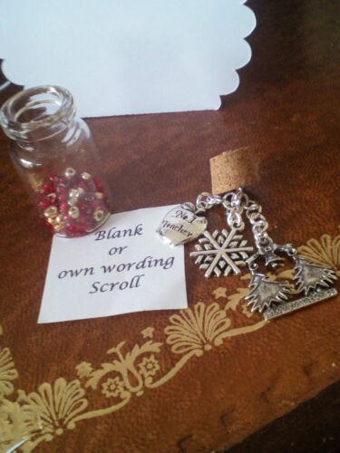 Message In A Bottle Teachers gift Merry Christmas No 1 Teacher