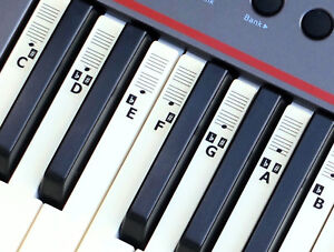 Piano-Stickers-for-49-54-61-KEY-Music-Keyboard-KEYNOTES-Labels-Online-Lessons