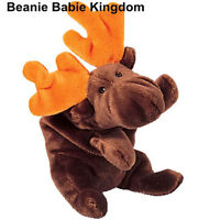 TY BEANIE BABIE * CHOCOLATE * THE BROWN AND ORANGE ANTLERED MOOSE