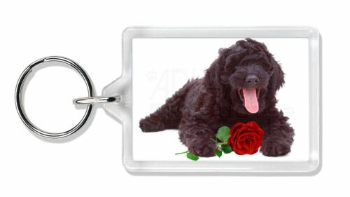 AD-LD2RK Labradoodle Dog with Red Rose Photo Keyring Animal Gift