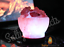 Natural-Himalayan-Pink-Rock-Salt-Lamp-Available-in-Different-Shapes-amp-Sizes miniatuur 73