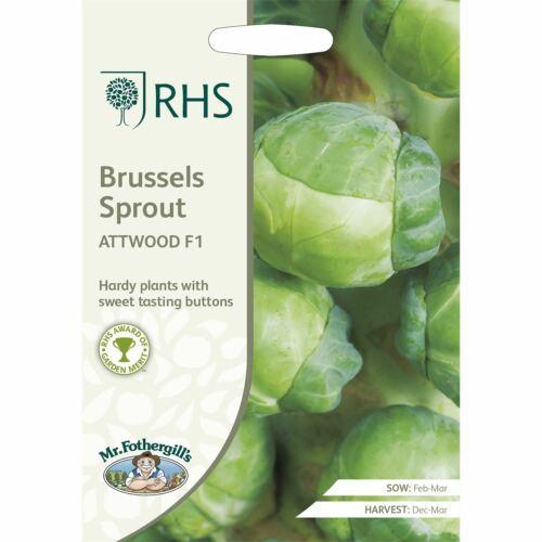 Mr Fothergills-paquet illustré-RHS Chou de Bruxelles ATTWOOD F1-40 graines