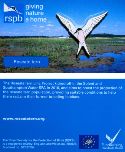 01276 RSPB Pin BadgeRoseate tern LIFE project