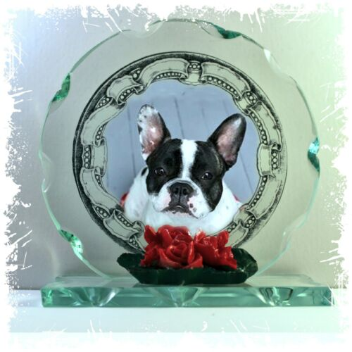 French Bulldog Photo Cut Glass Round Frame Plaque Occasion Limited Edition #1
