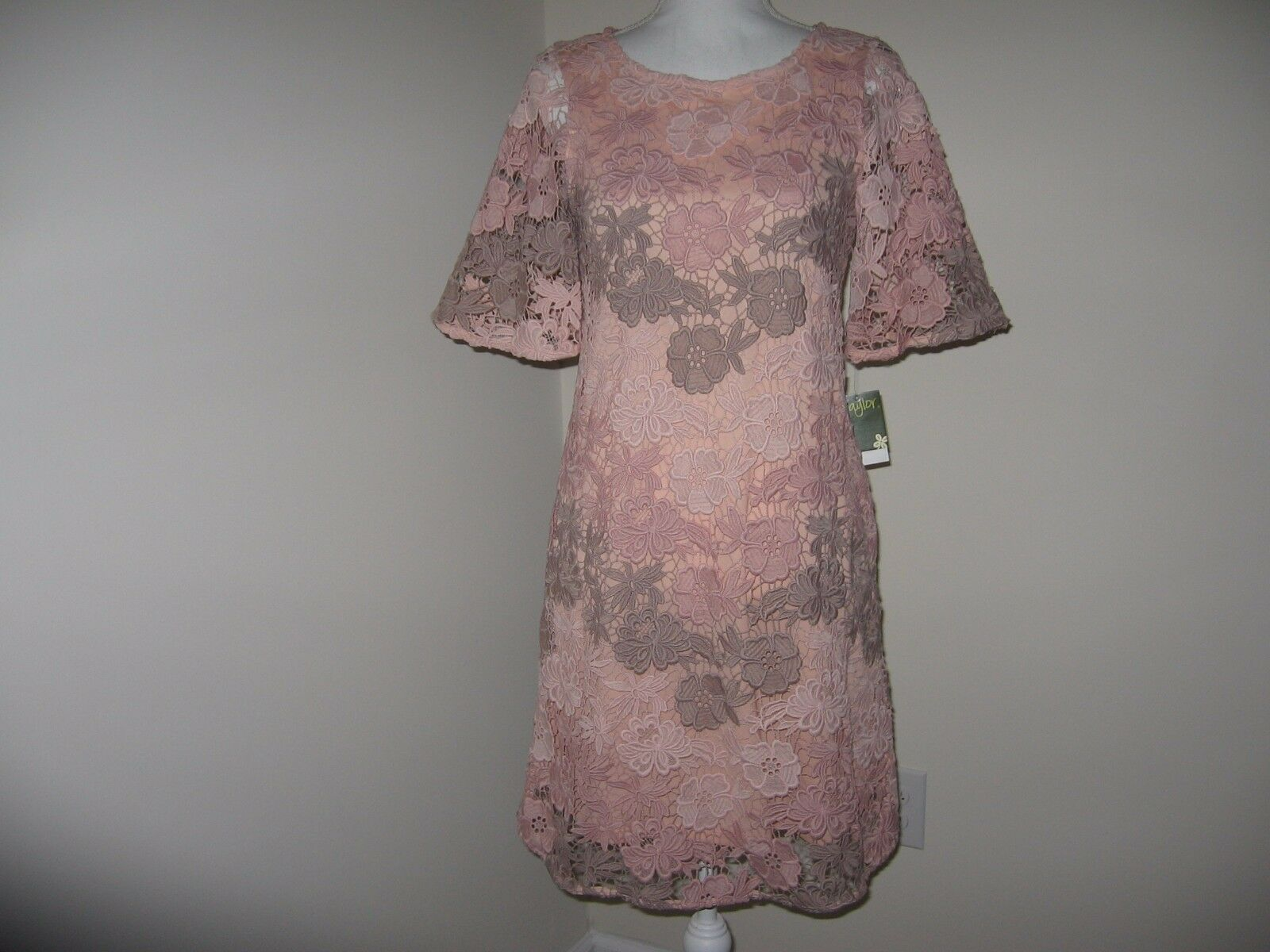 Taylor Short Sleeve Lace Dress for Woman Size 4 NWT
