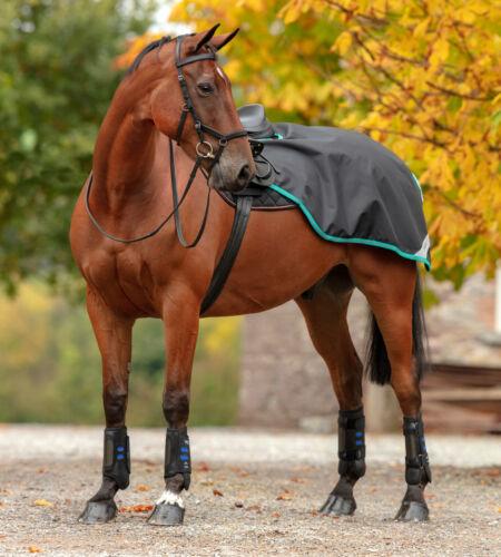 Horseware Amigo COMPETITION Waterproof Exercise Sheet Rug Navy//Choc//Red//Black