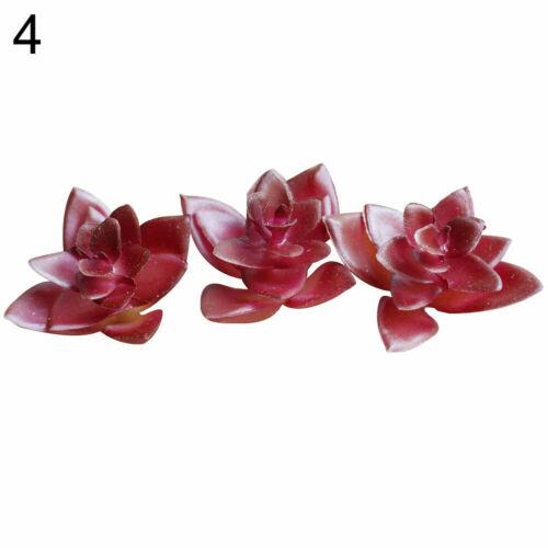 BE/_ Artificial Succulent Flower Floral Stem Fake Plant Foliage Garden Decor Nove