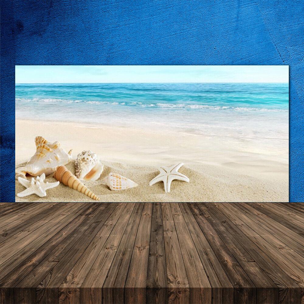 Crédence de cuisine en verre Panneau 120x60 Paysage Coquillages étoile De Mer