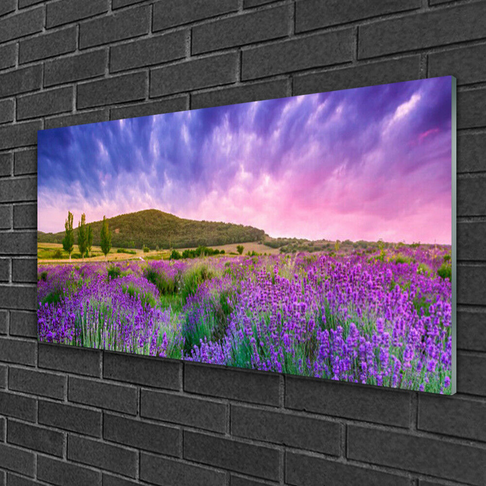 Image sur verre Tableau Impression 100x50 Nature Prairie Fleurs Montagnes