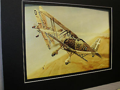 Italian CR 42 Falco  Aviation Archives Ebay Largest selection  artist