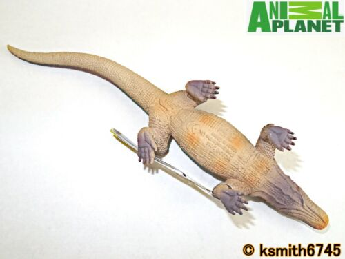 Mojo Animal Planet Marron KOMODO DRAGON solide Jouet en plastique Wild Zoo NEUF