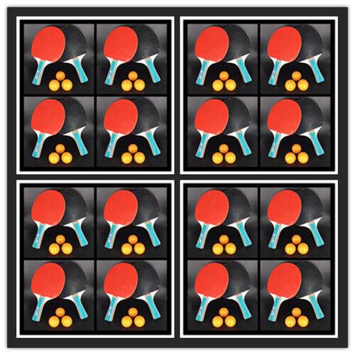 16xtischtennisschläger Set TABLE 32tischtennis RAQUETTE 48 balles TENNIS DE TABLE Set 50e824