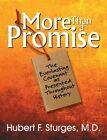 More Than a Promise by Hurbert F Sturges, Hubert F Sturges (Paperback / softback, 2013)
