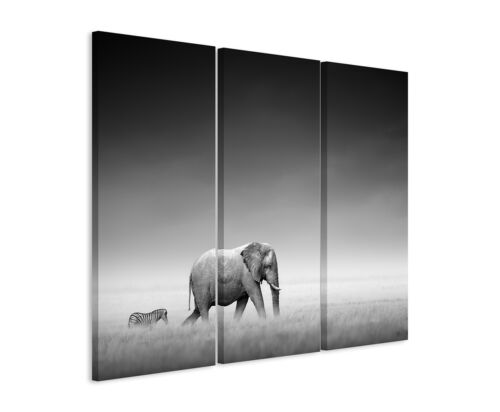 Wall PICTURE ANIMAL PHOTOGRAPHY Elephant and Zebra on Canvas