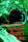 Foster Twins in The Mystery at Moore's Lake 9780595670871 by Jim D Brown