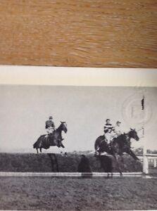 Ephemera-Reprint-Picture-Horse-Racing-1921-Grand-National-Dick-Rees-M49