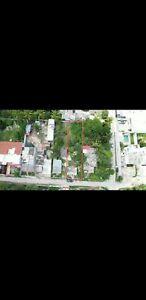 Amplio terreno  venta en Cholul