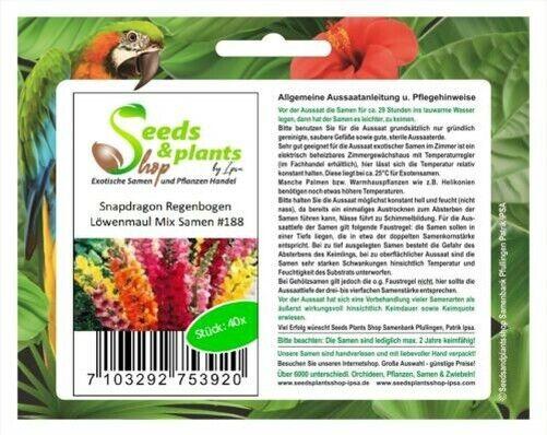 40x Snapdragon Rainbow Mix Löwenmaul Seeds Plant Garden #188