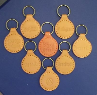 Leather keychain AA coins NA AA Medallions Gratitude Handmade Tan AA chips