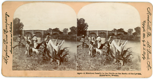 Stereo-Keystone-View-Company-B-L-Singley-A-Mexican-Family-in-the-Fields-on