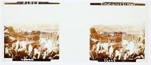 Algeri-Cimitero-Algeria-Foto-Stereo-PL58L24n-Placca-Lente-Vintage
