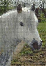 "White Highland Pony, Horse Portrait - Animal Cross Stitch Kit 7"" x 10"", 14 Count"