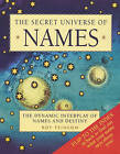 The Secret Universe of Names: The Dynamic Interplay of Names and Destiny by Roy Feinson (Paperback, 2010)