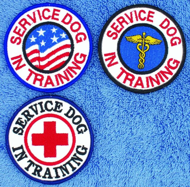 """Service Dog In Training Patch 3"""" Medical Assistance Therapy Disabled Danny LuAnn"""