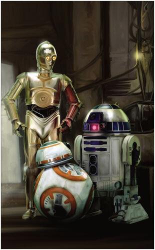 Star Wars Droids BB8 C3P0 R2D2 Vintage Movie Large Poster Art Print 91x61 cm