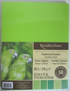 Recollections-Cartulina-Papel-8-1-5-1cm-x-27-9cm-50-Hojas-29-5kg-Plumas-Verdes