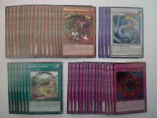 Aromage / Ancient Sacred Wyvern Deck * Ready To Play * Yu-gi-oh