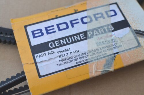 Bedford ceinture paire avx10x1425 SA2 9966581