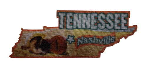 Travel Souvenir State Capitol 054-L Nashville Tennessee Printed Iron On Patch