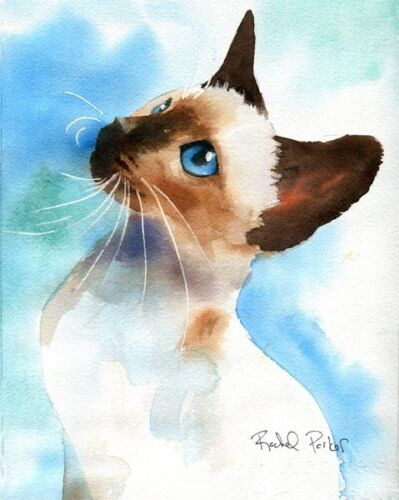 Giclee PRINT Siamese Chocolate Seal  Point Cat Art Watercolor Painting Portrait