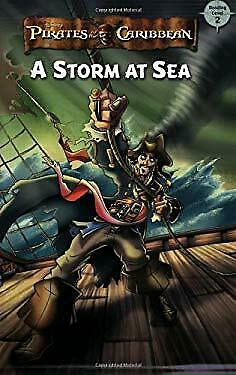 Storm at Sea by Bones, Bess