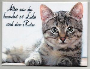 Katze Lustig Spruch